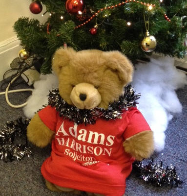 Adams Harrison Christmas Bear